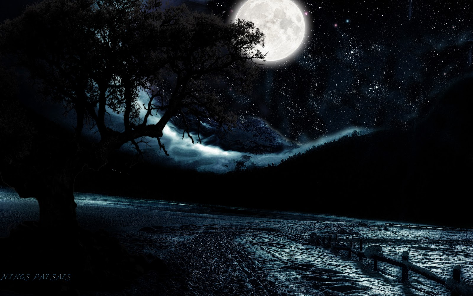 Moon light and stars night background with trees nature ...
