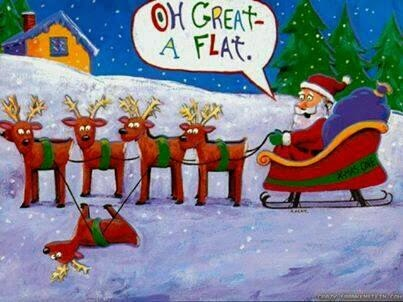 Father Christmas Flat Reindeer Cartoon Joke Picture