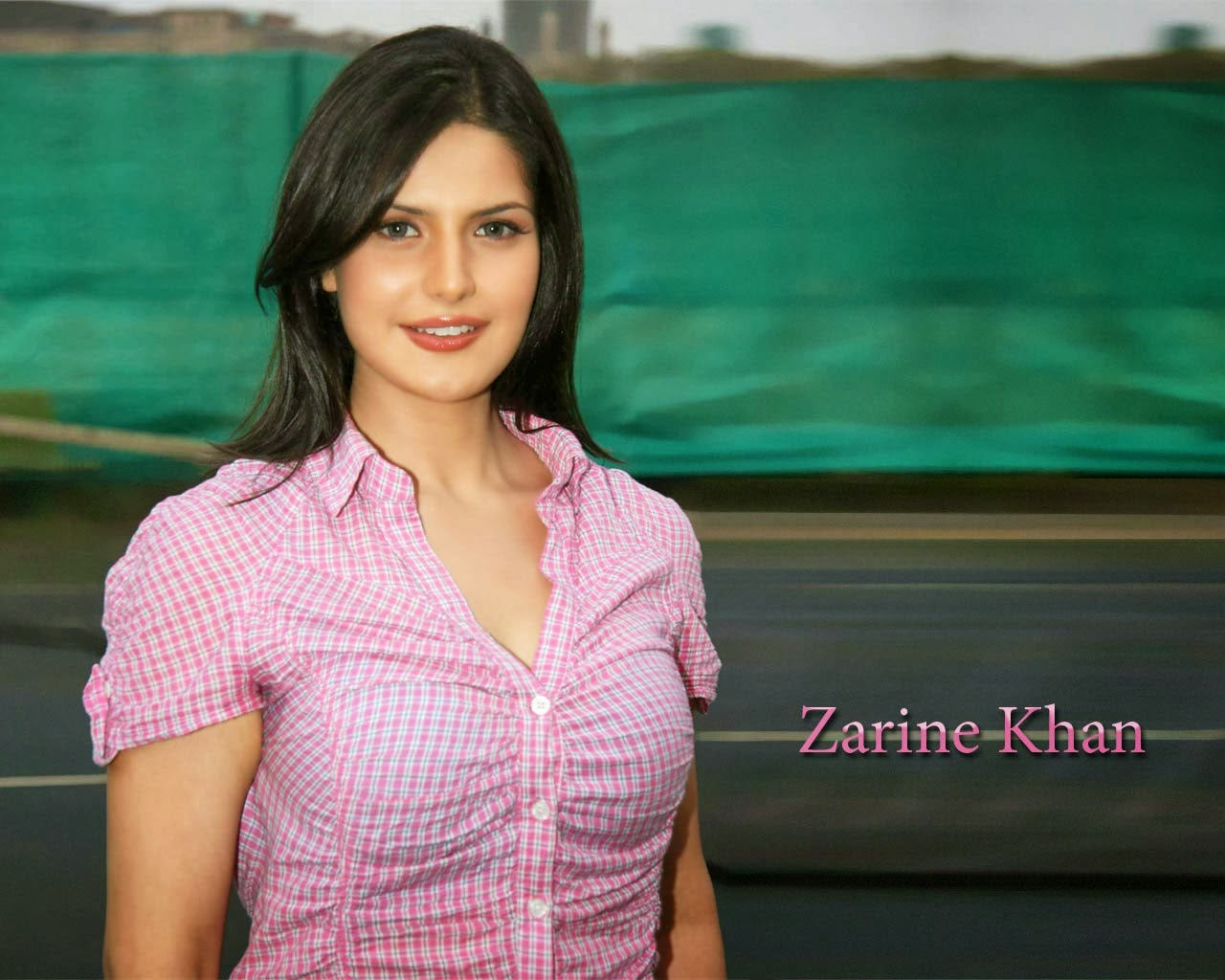 zarin khan hot boobs photo
