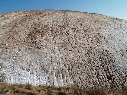 El runam salí de la Botjosa