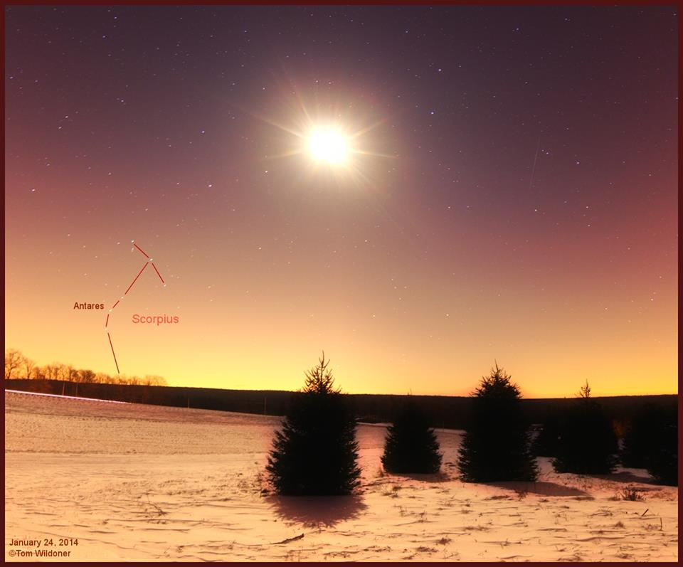 Chòm sao bò cạp Scorpius đang trở lại bầu trời của chúng ta, bây giờ bạn sẽ thấy nó mọc ở hướng đông vào buổi tối. Đây là bức hình phơi sáng 30 giây. Hình ảnh này được chụp vào sáng sớm 24/1/2014 bởi tác giả Tom Wildoner.