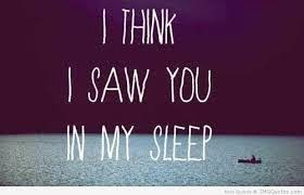 Dreaming Quotes 29   Image Quotes