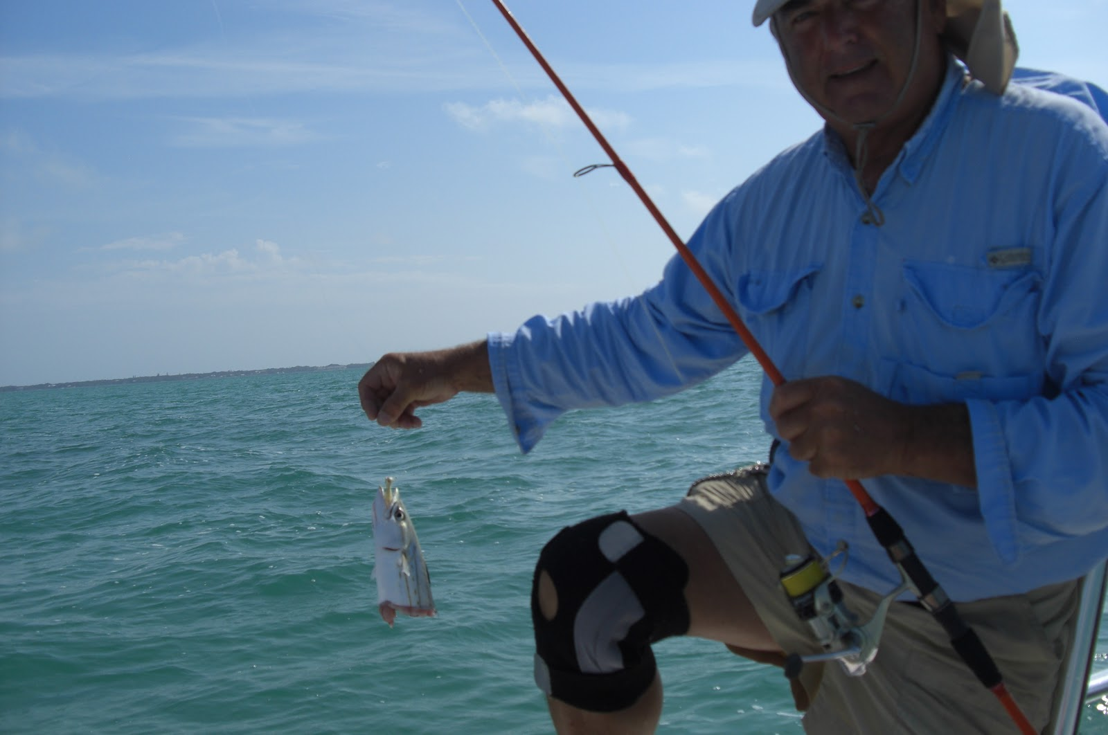 My life in the florida keys and beyond voila there be for Plenty of fish florida