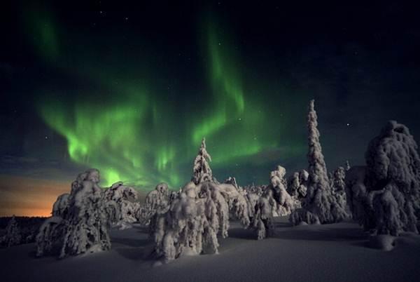 fanomena-aurora