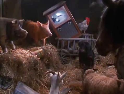 Los animales se calman viendo la televisión en Rebelión en la granja - Cine de Escritor