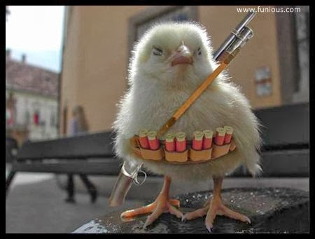 funny Cute chick a seurity graud