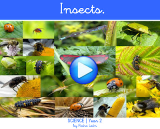 http://dl.dropbox.com/u/61199074/CBM/flash/Science2_Insects.swf