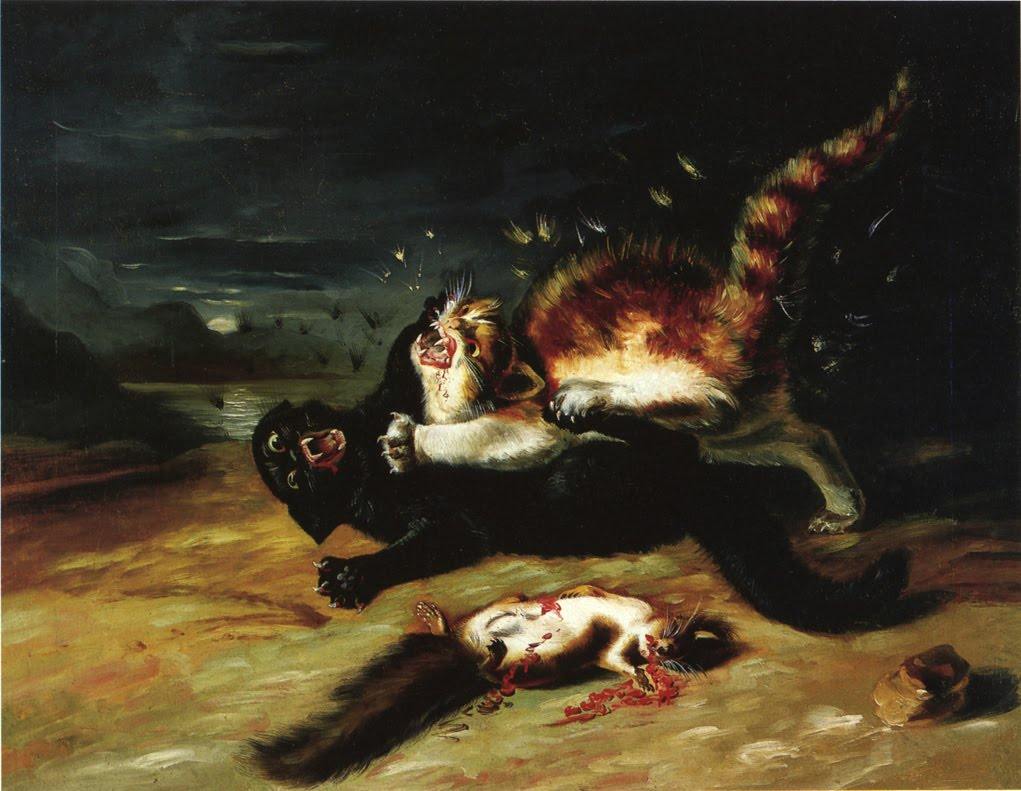 http://1.bp.blogspot.com/-M_koJWyplpc/TWmXcaWwp-I/AAAAAAAAGyg/t3djsPab3Xo/s1600/Two-Cats-Fighting-1826.jpg