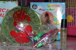 Hamster Ball Jambi