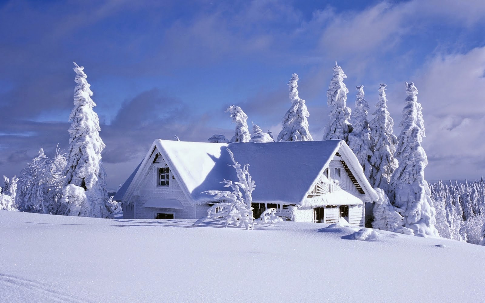 free winter wallpaper snow