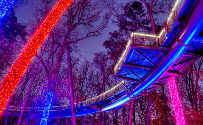 garden lights sky night walk atlanta botanica garden - Atlanta Botanical Garden Lights