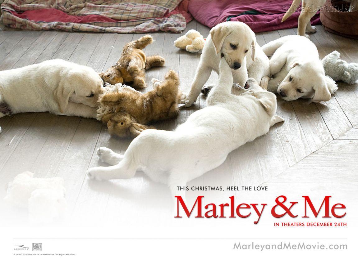 MARLEY E EU EM EBOOK