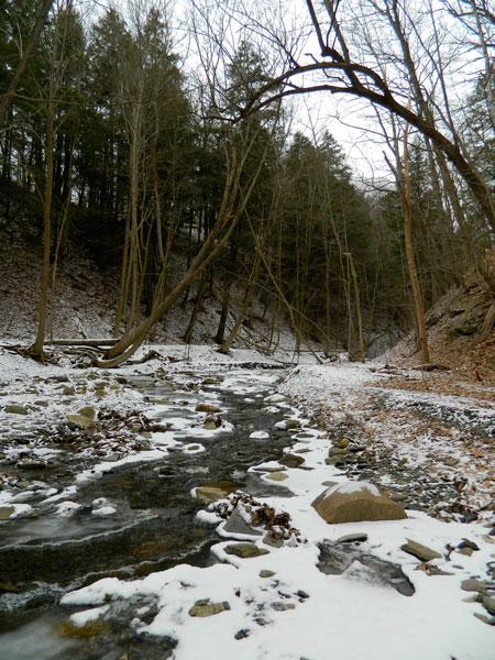 Barnes Creek, Canandaigua, NY in Winter