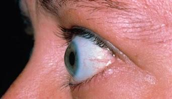 http://www.high-myopia-eye-hospital.com/about-us.php