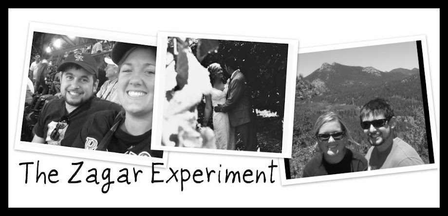 The Zagar Experiment