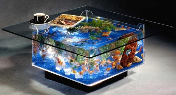 Fish And Aquarium Blog 9 Cool Home Aquariums