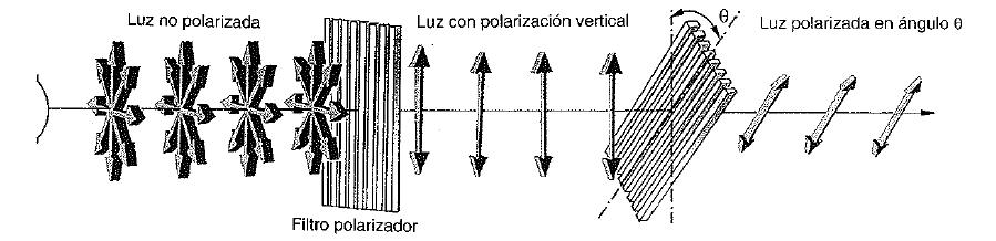 polarizacion de ondas