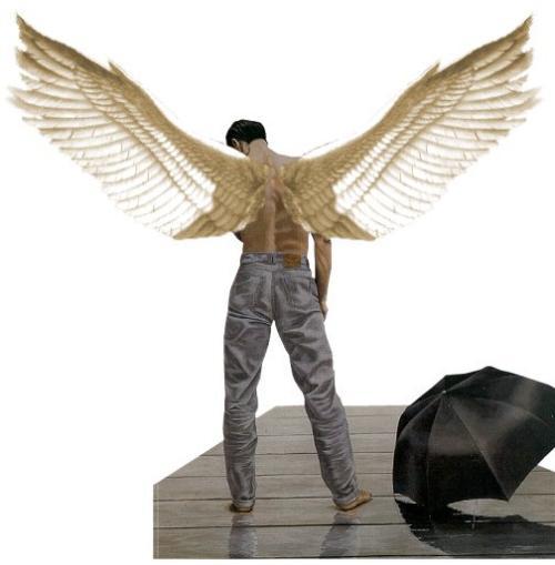 asas de anjo ficam - photo #46