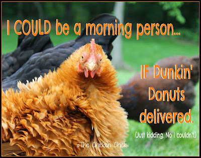 I COULD be a morning person...if Dunkin' Donuts delivered. (Just kidding. No I couldn't.)