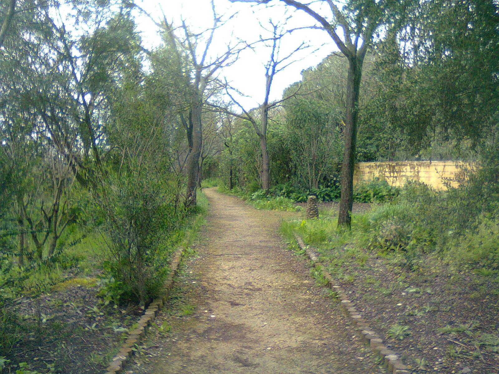 Plataforma ciudadana parques y jardines sevilla denuncias for Jardines particulares