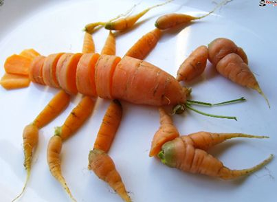 Creative carrot carving