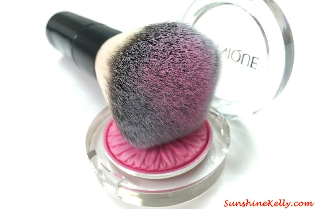 Portable Professional Powder & Blusher Brush Review, Cosmetics brush review, cosmetics brush, born pretty