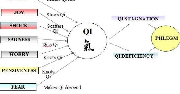 Stomach Qi Xu - (deficiency)