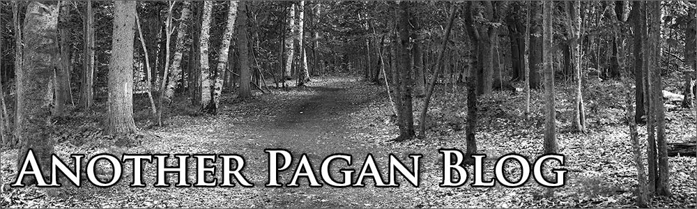 Another Pagan Blog