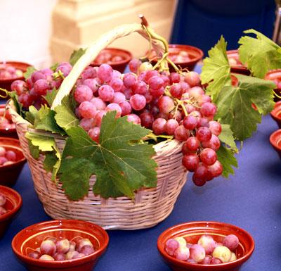 Itinerario biodiversidad domesticada variedades de uva de mesa y vino del valle del andarax - Variedades de uva de mesa ...