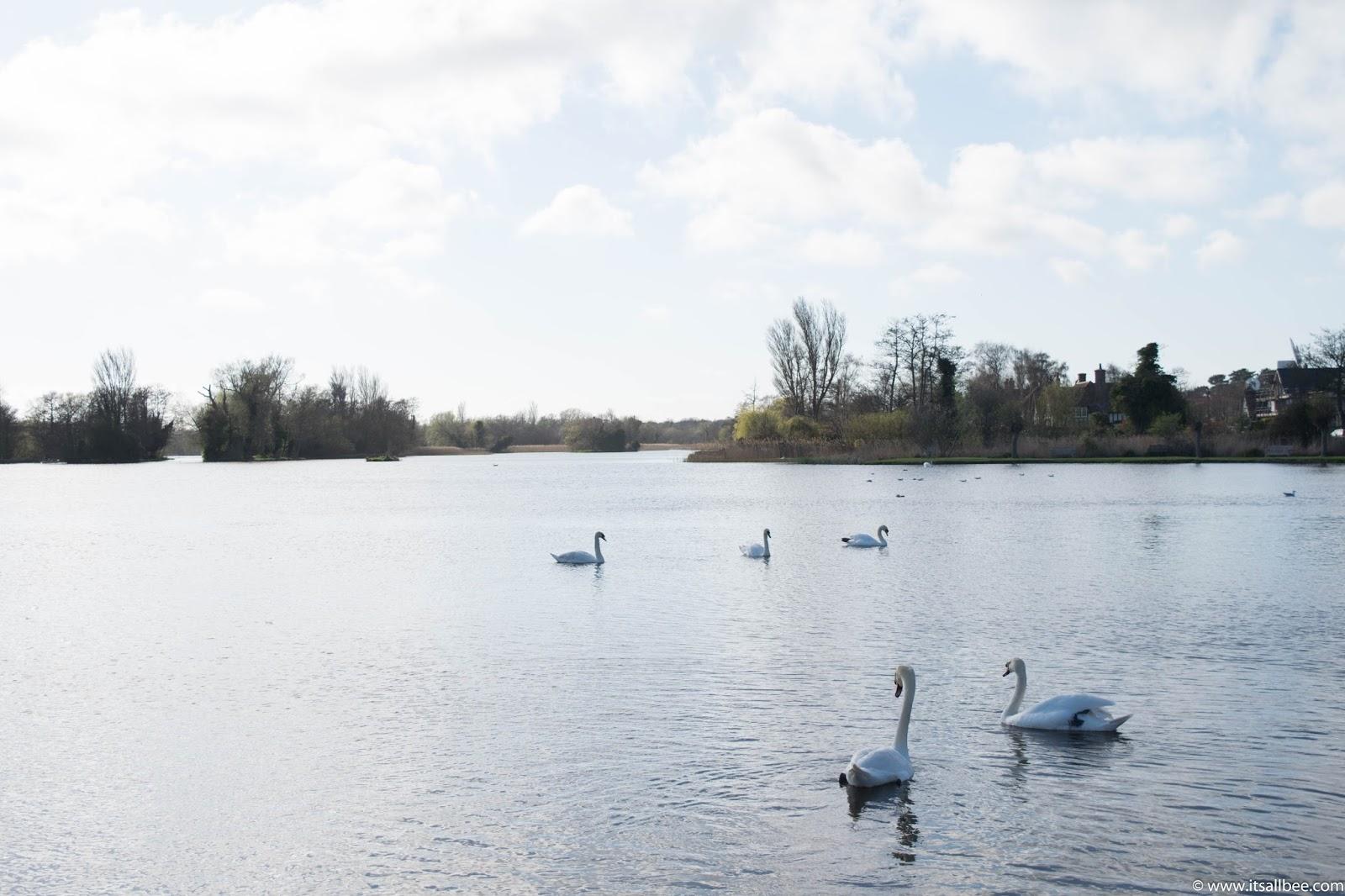 Thorpeness Lake | Thorpeness Boating Lake | Thorpeness Lake | Thorpeness Village