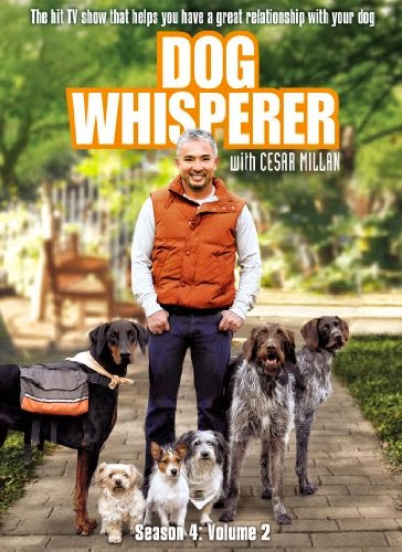 Animal Planet: Dog Whisperer S02E04 HDTV AVI Dublado