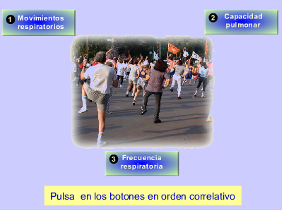 http://recursostic.educacion.es/secundaria/edad/3esobiologia/3quincena8/imagenes/activid_respirato.swf