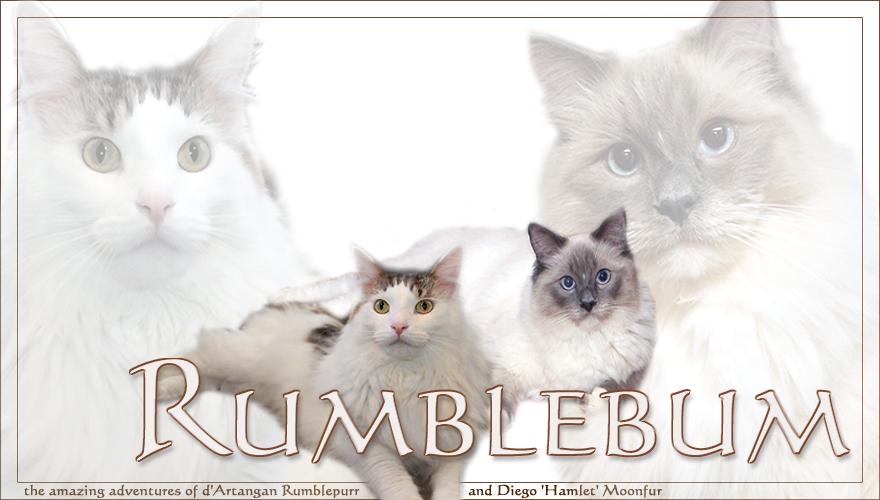 Rumblebum