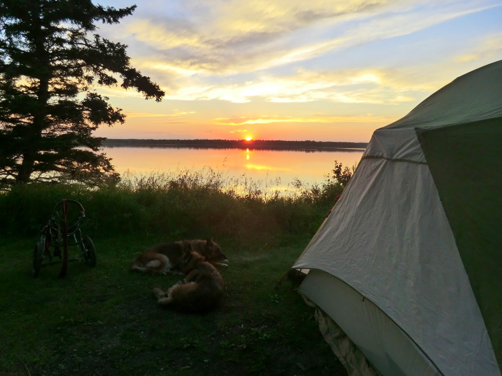 Leben and Erde enjoying one of their 213 sunsets at different camps (Riding Mountain, Manitoba)