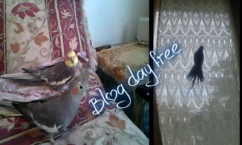 Blog Day Free