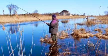 Ловля окуня на поплавочную удочку весной