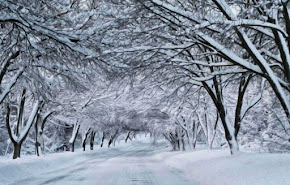 Reflections on a Snow/Slow Week - the Vicar's blog