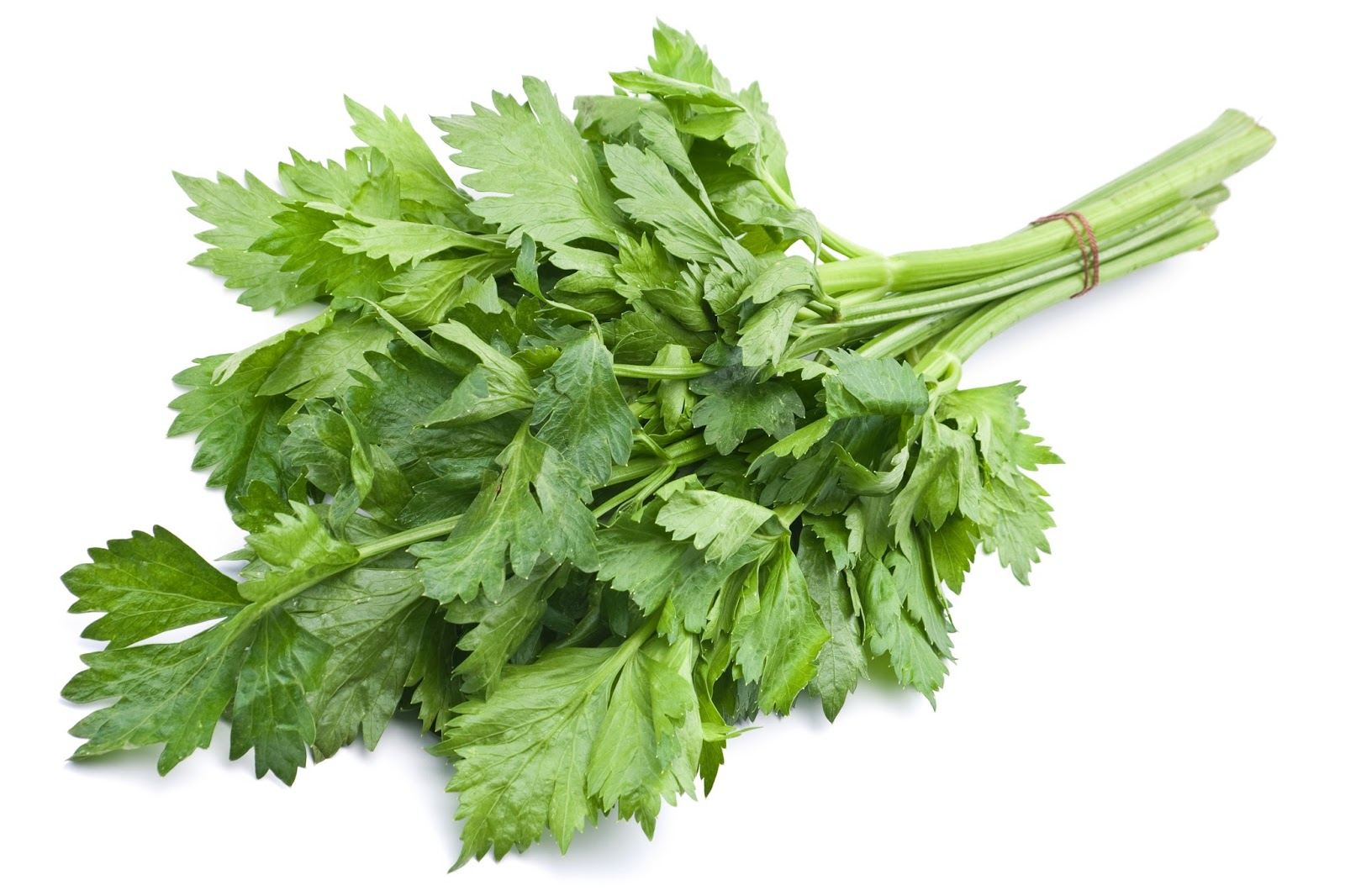 Sugar & Two Cents: 10 ways to use up celery leaves