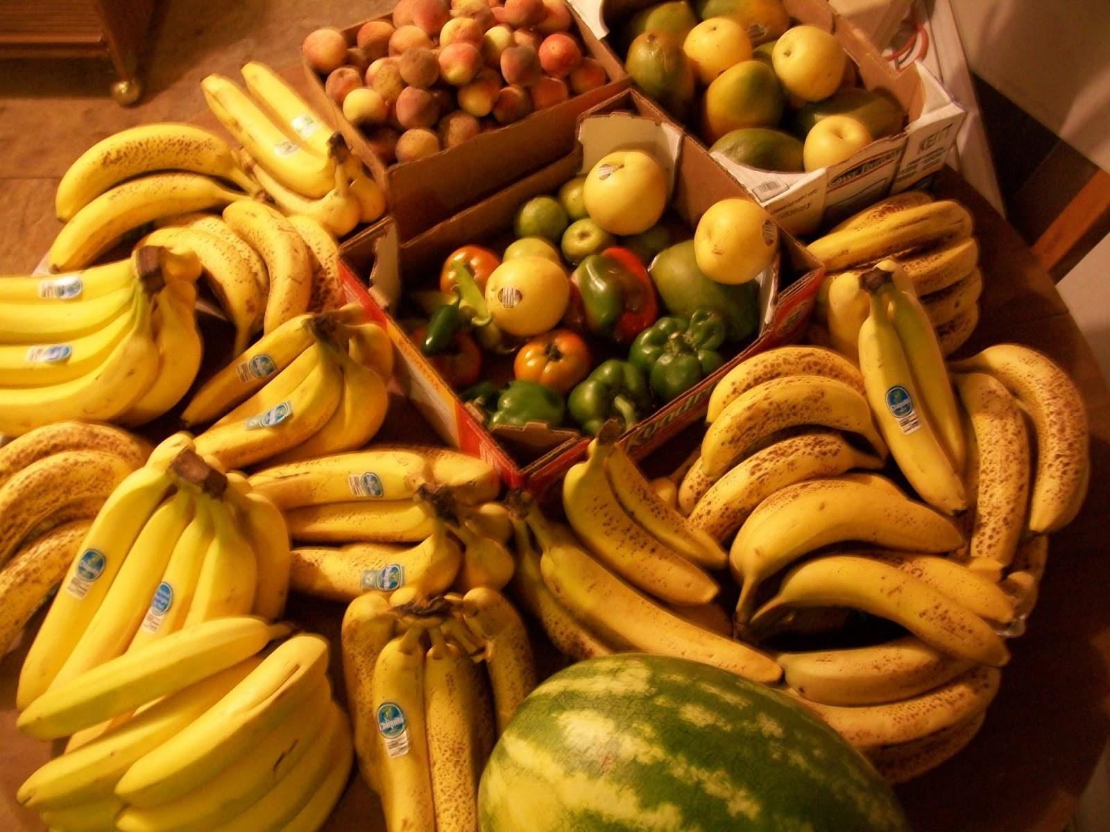 Vegans Living Off the Land: Garden Harvest & Grocery Hauls (Raw ...