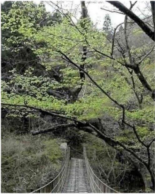 gambar jambatan tasik berhantu