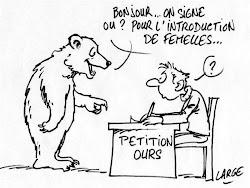 À l'ère de la pétitionnite aiguë