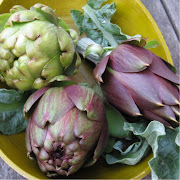 Read Urban Artichoke