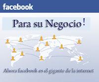 manuales para entender Facebook y usarlo en la promoción de tu negocio