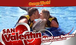 """Ocean World """"Nado Con Delfines"""" Oferta especial para San Valentin"""