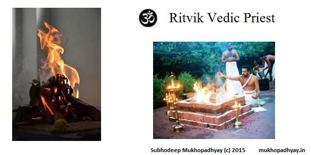 Ritvik Vedic Priest