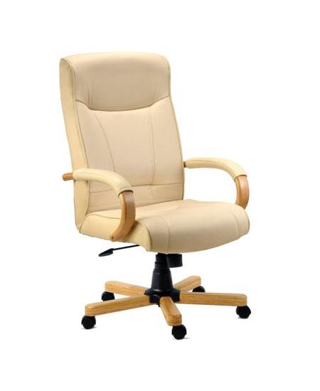 Stylish Luxury Office Chair