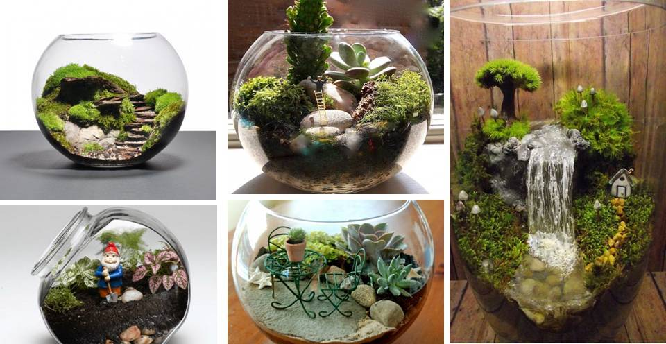 22 amazing miniature terrarium ideas for try now. Black Bedroom Furniture Sets. Home Design Ideas
