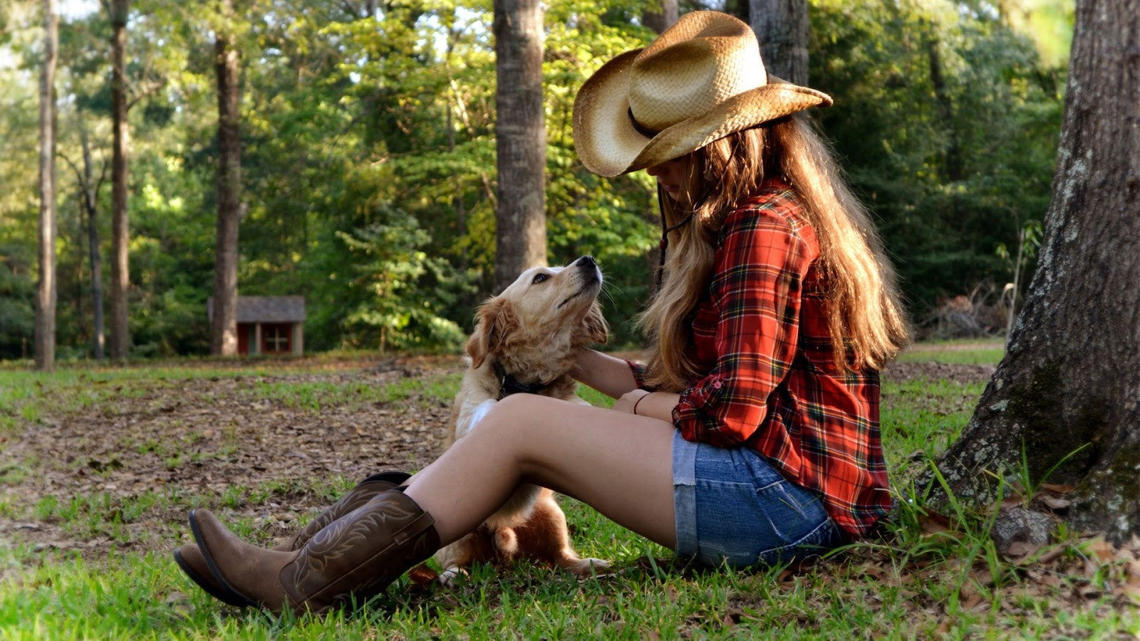 Cowgirl Dog