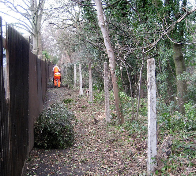 Railway path between West Wickham and Hayes: mesh fence being stripped out