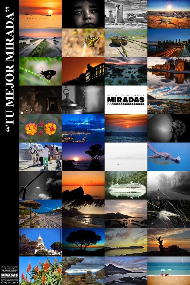 Mosaico y portada del calendario 2015 de la Asociación